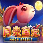 Moon Rabbit