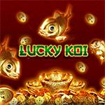 LuckyKoi